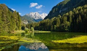 Important Letter regarding Slovenia Trip